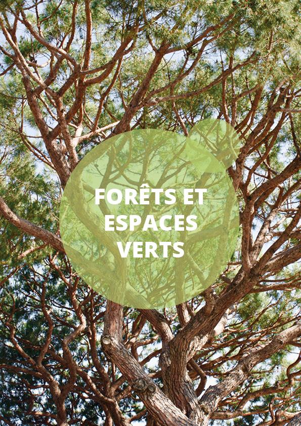 Catégorie forets et espace vert